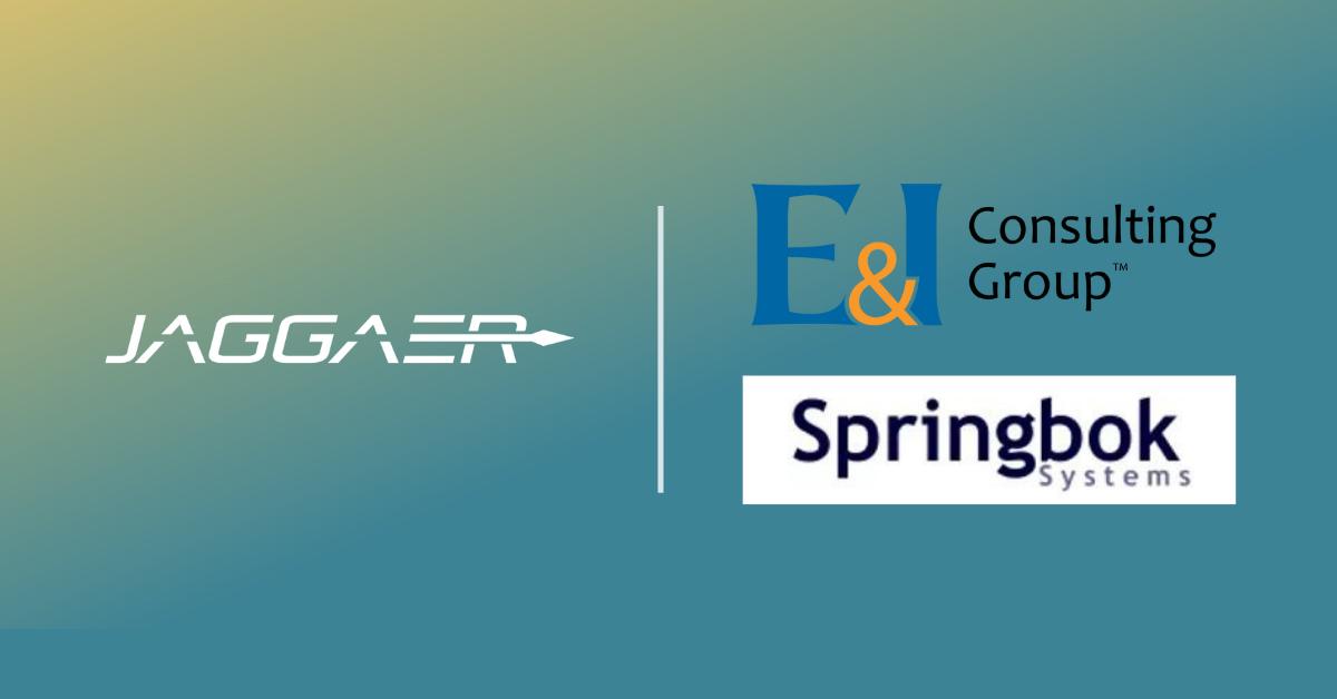 JAGGAER   E&I Consulting Group   Springbok Systems
