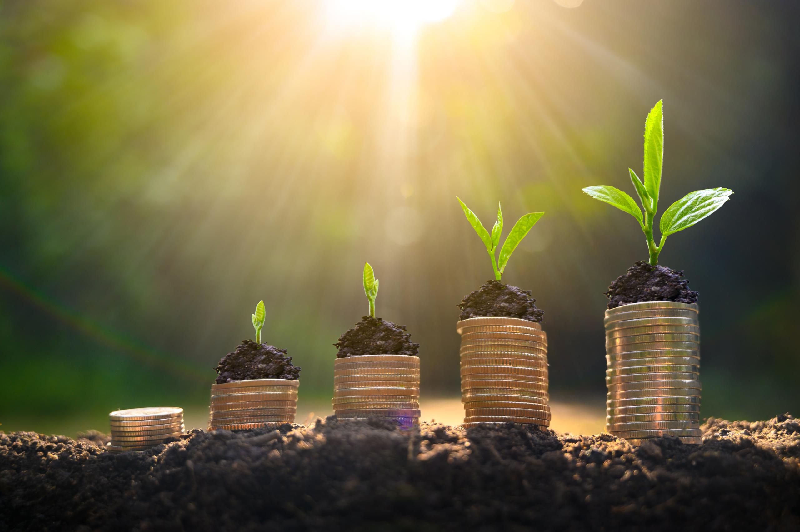 Benefits of supplier diversity: cost savings