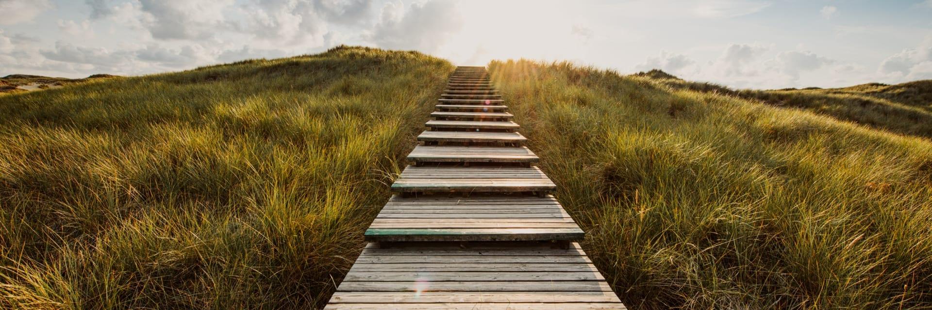 Steps to a Supplier Diversity Program
