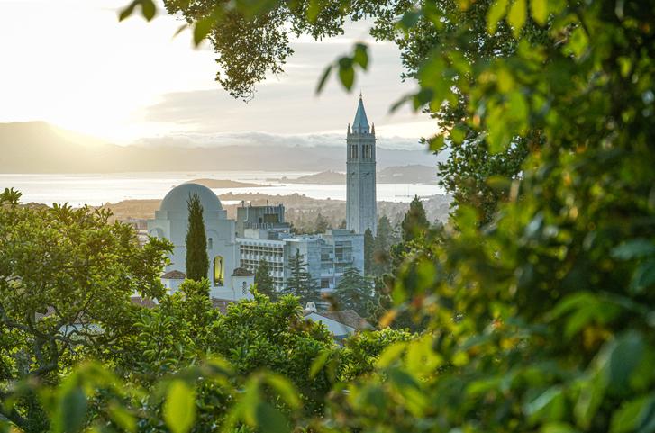 Berkeley Skyline